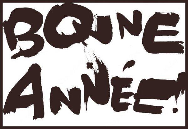 BONNE ANNEE 2010 !