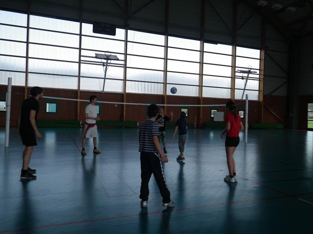 h_volley_3.jpg
